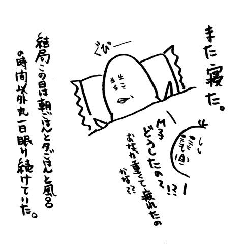 [画像:e20a1941-s.jpg]