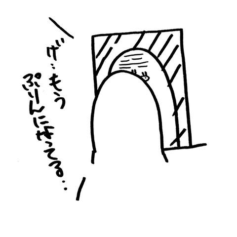 IMG_20181218_103716
