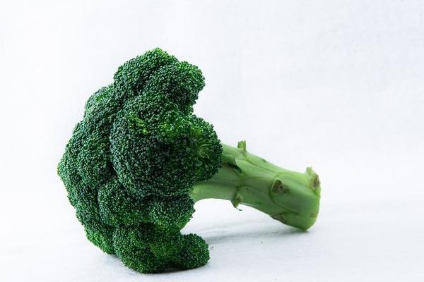 ブロッコリーの新芽(スプラウト)で「がん」予防
