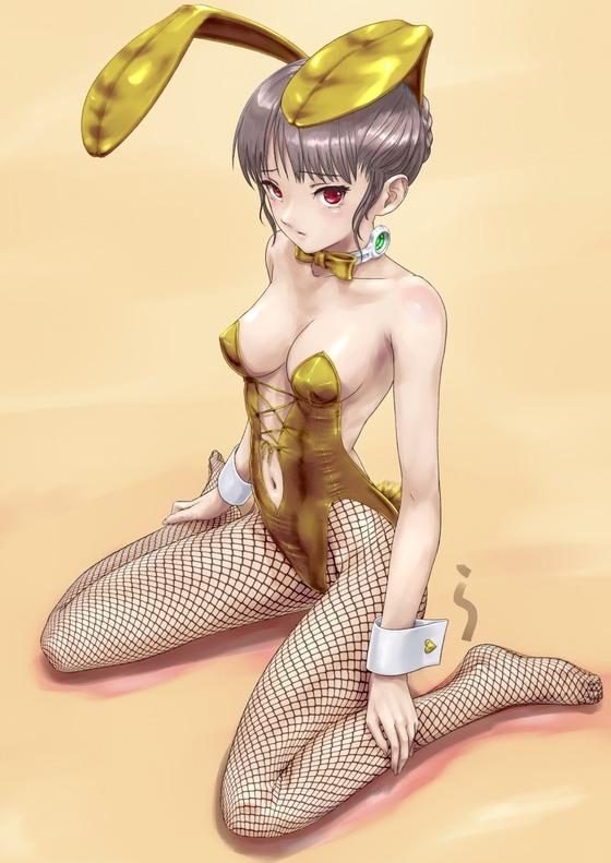 バニーガール姿の二次元美少女の画像ください21