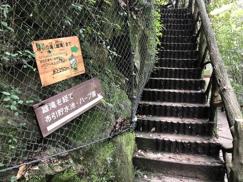 新神戸駅から摩耶山 (2)