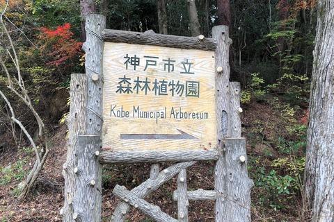ハイキング (4) 神戸森林植物園