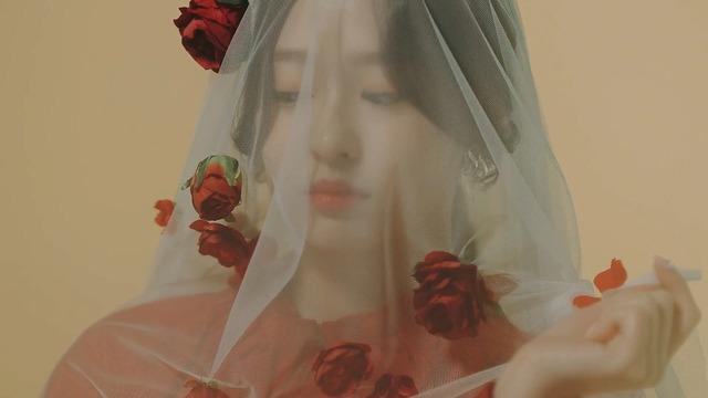 La Vie en Rose MV008
