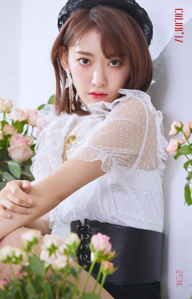 sakura album 20181021j