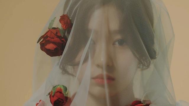 La Vie en Rose MV085