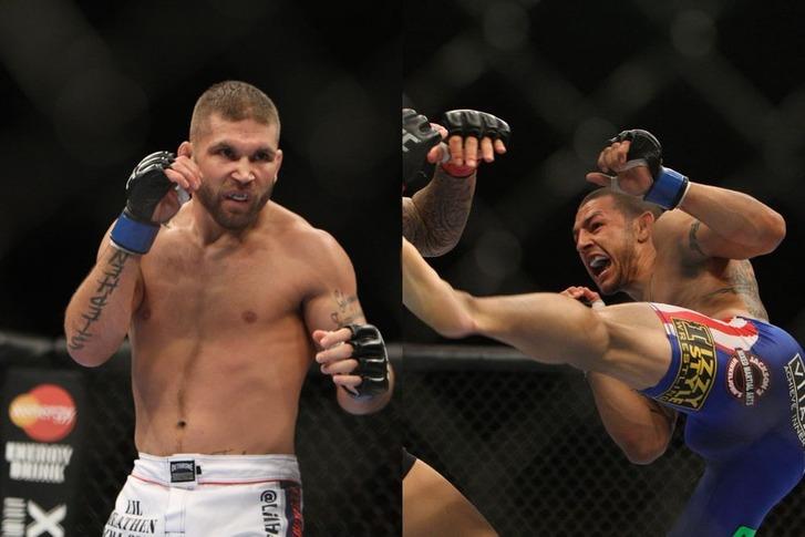 Stephens vs Swanson