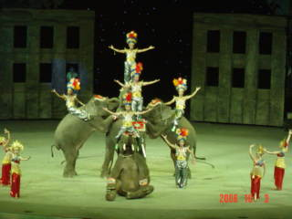 大馬戯 大象