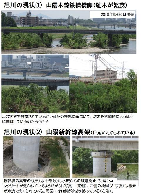 旭川 山陽本線と山陽新幹線の橋脚部の現状02