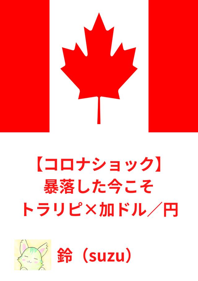 【コロナショック】暴落した今こそトラリピ×加ドル/円
