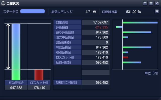 【ロスカット対策】ループイフダンのリスク管理-PC版口座状況