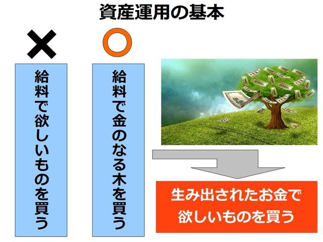 【資産運用の始め方】金のなる木を育てる