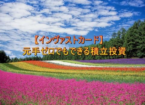 flower-garden-250016_1280