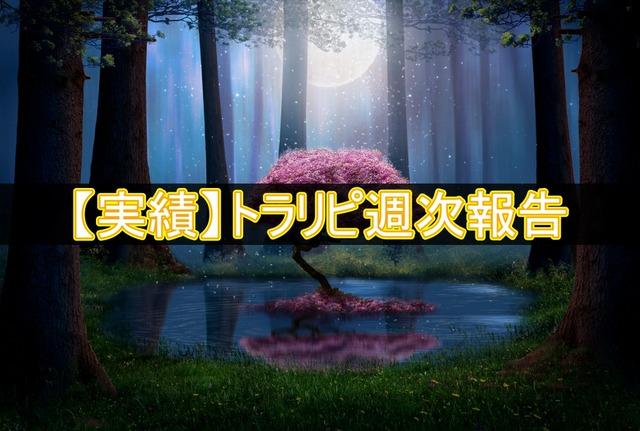 【実績】トラリピ週次報告