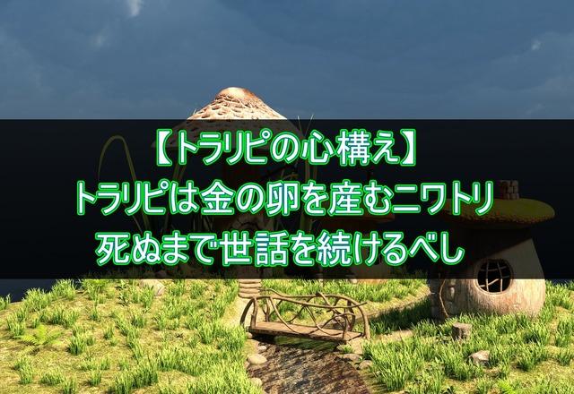 【トラリピの心構え】トラリピは金の卵を産むニワトリ