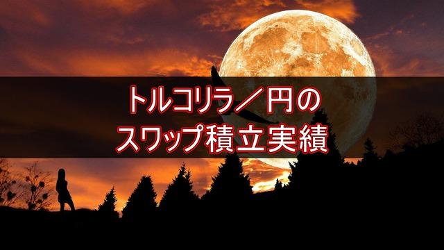トルコリラ/円のスワップ積立実績