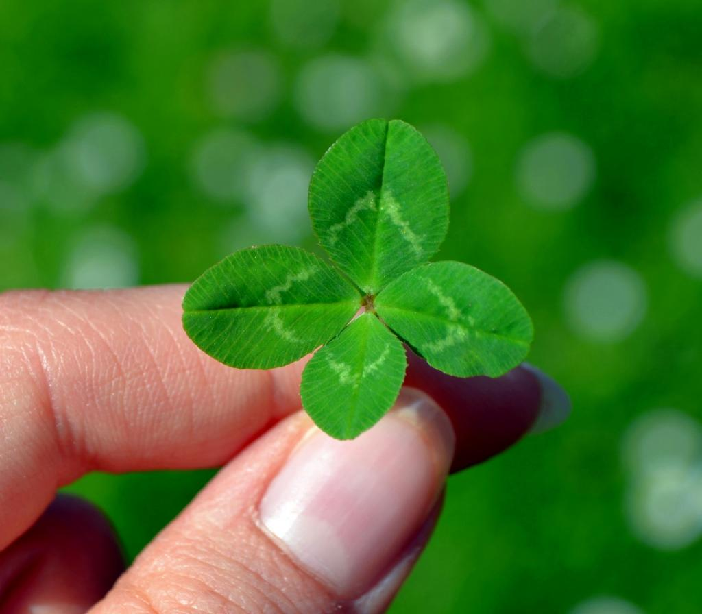 クレー 四つ葉のクローバー 緑 幸運のクローバー 壁紙iphone