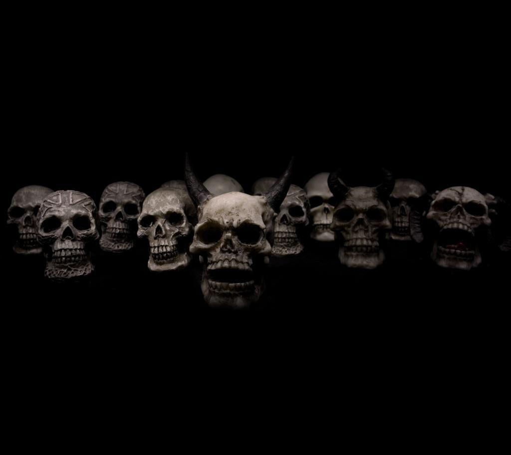 い頭蓋骨の壁紙 ホラー 死 高精細の画像は 材料を入力します 壁紙