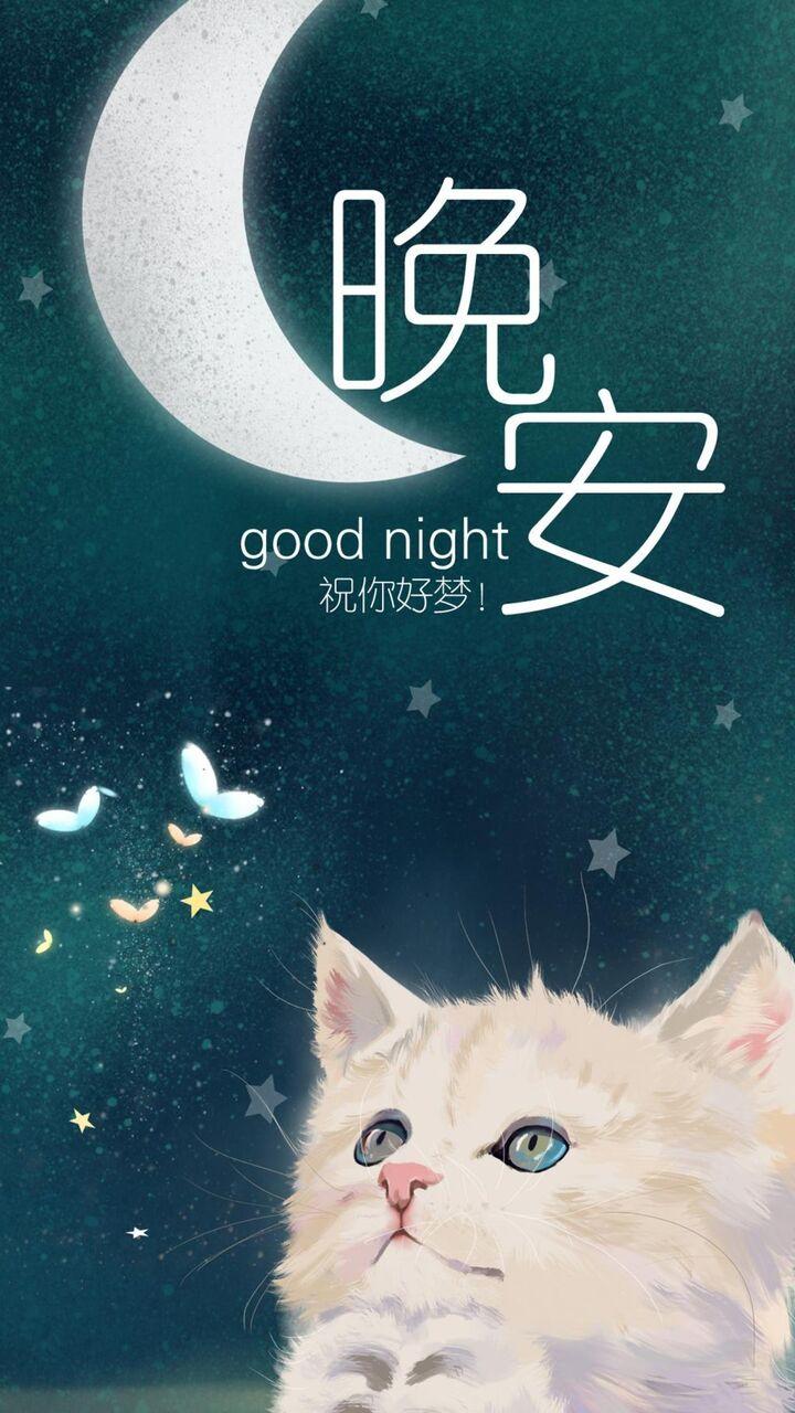 グッド夜空孟ペットの猫美的win10壁紙イラスト ロック画面の画像 Hdの携帯電話の壁紙 代替 壁紙