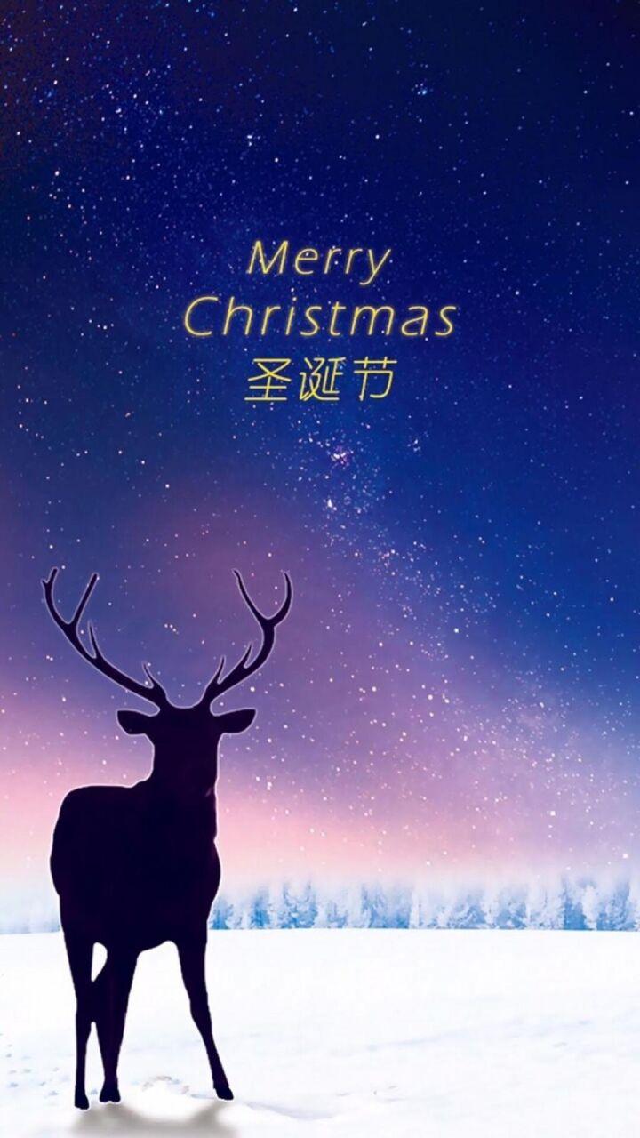 セントシャネルバイオ屋ritz シリコーンクリスマスの日の壁紙の