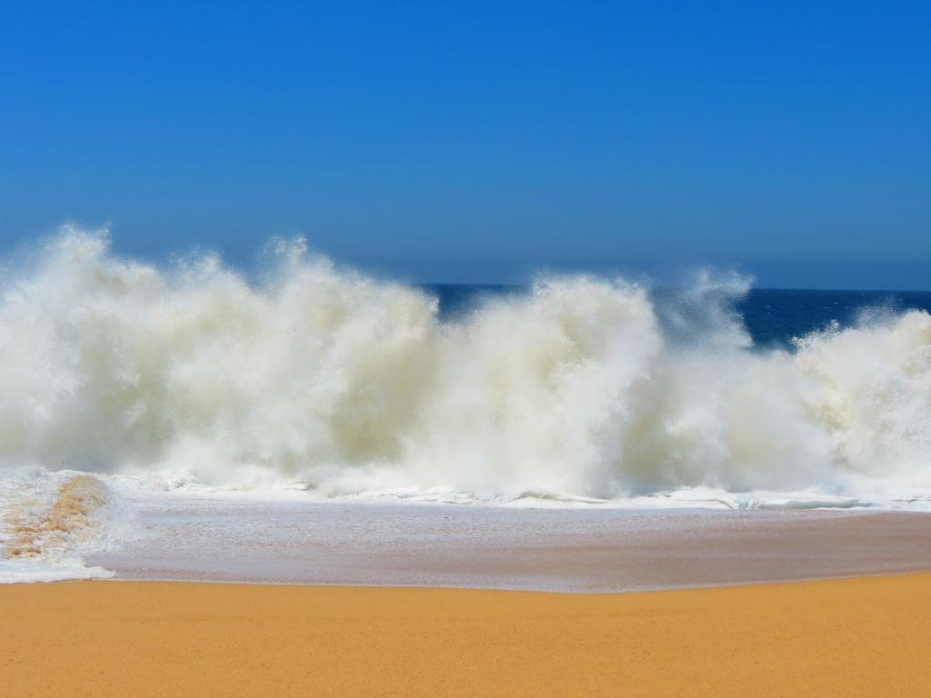 衝突波 浜の恋人 メキシコ 韓国 かわいいいデルカボ ビーチ 海