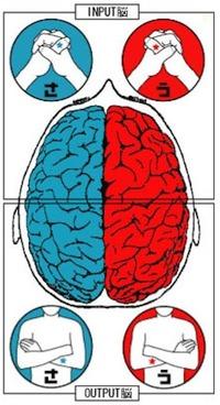 brainmh