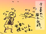 猫と対峙する