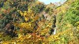 神庭の滝紅葉