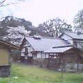 20050410_1346_000.jpg