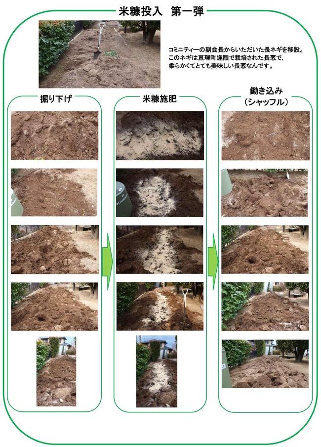 2014年1月米糠施肥