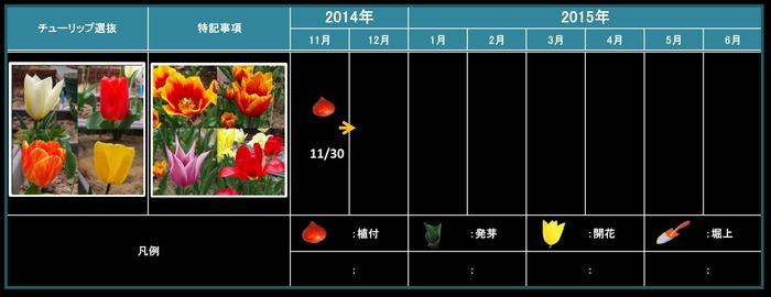 選抜201411