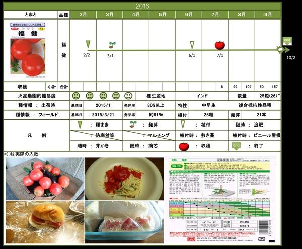 2016年栽培日記トマト結果
