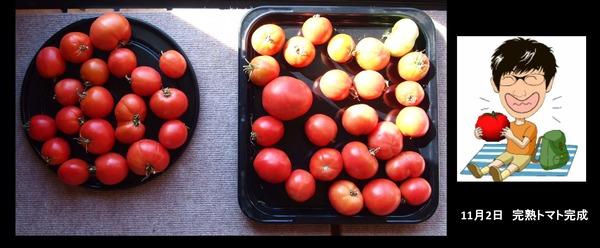 天日干しトマト3