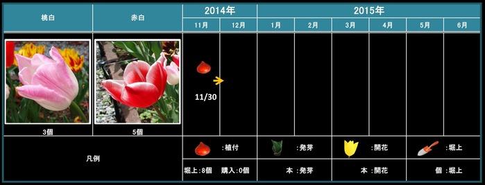 桃白・赤白201411