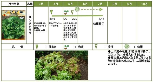 2014年日記7月サラダ菜