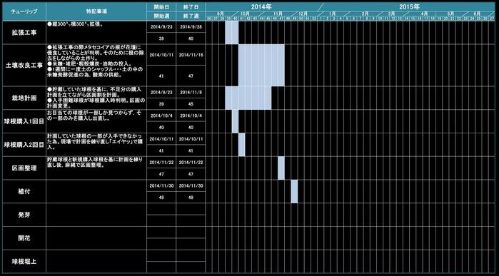 チューリップ2015-2015栽培計画