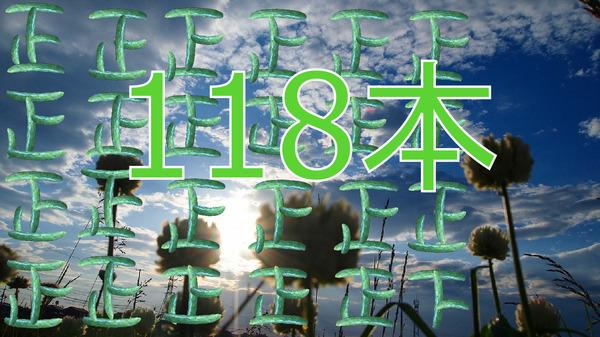 きゅうり118本