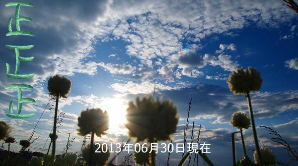きゅうりの収穫20130630