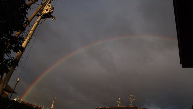 PB021447虹