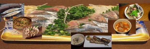 harvest season秋刀魚の刺身