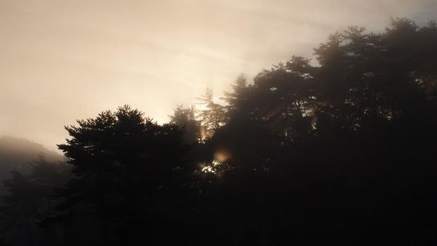 朝もやと朝日