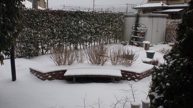 ほーらすごい雪