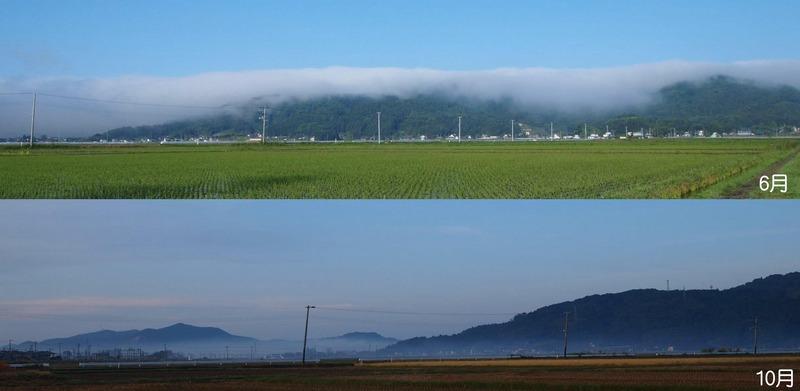 霧6-10月