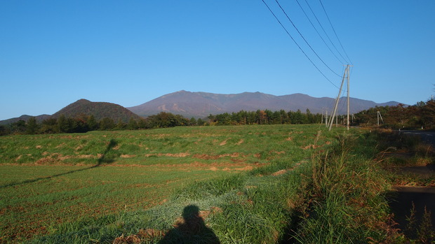 PA212010