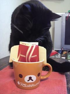 コーヒーのにほひが♪