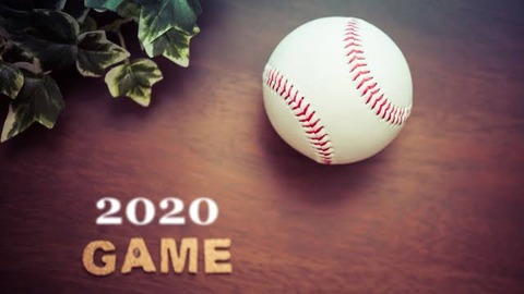 【総括】ここだけプロ野球2020年シーズン終了