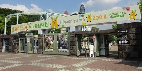 【画像集】動物園来とるんやけどj民達動物見たい?
