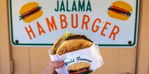 (ヽ´ん`)「ハンバーガーとチキンクリスプを合体した嫌儲バーガーをドカ食いしてる」