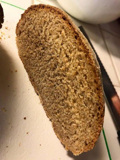 彡(°)(°)「古代エジプトの遺物から取り出したパン酵母でパンを焼いたろ!」