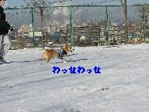 0b5e9508.jpg