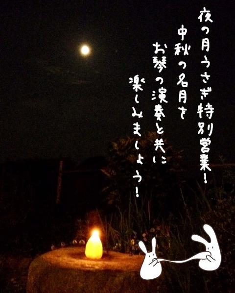 夜の月うさぎ